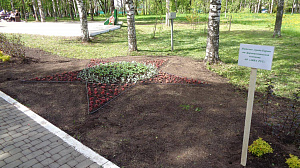 The pharmaceutical company AVVA RUS presented a flower bed to the residents of Kirov